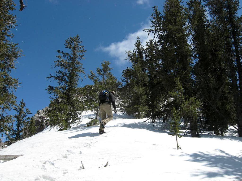 Heading up the snow
