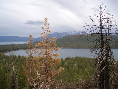 The Fallen Leaf Lake and ...