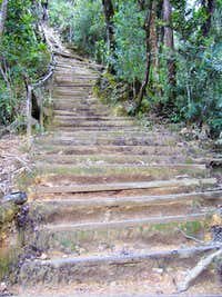 Oh God! More Steps