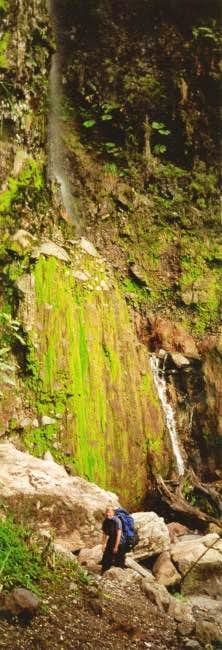 Beautiful waterfall on the...