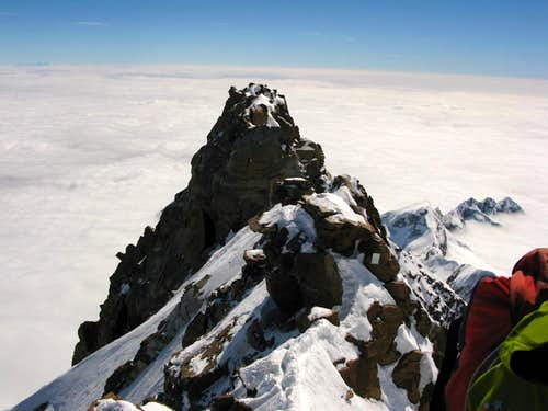view from the summit of Dufourspitze 4634m