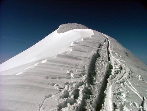 Cevedale summit ridge