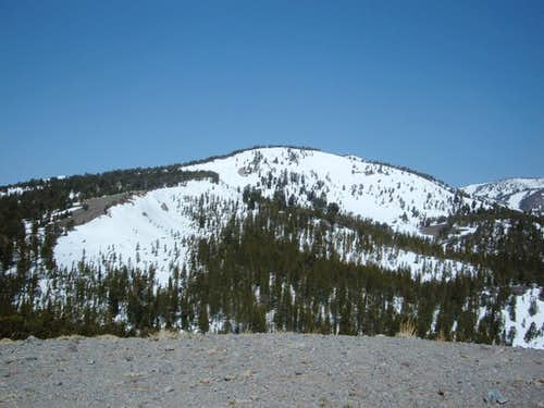 Tamarack Peak from Point 9201