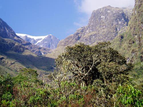 Mururata (5800m) from Takesi Alto