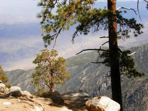 San Jacinto Views