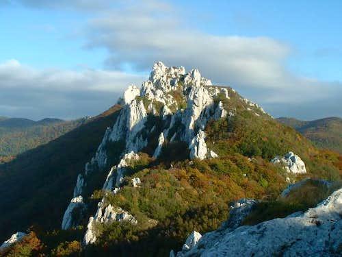 Autumn colours on the ridge...
