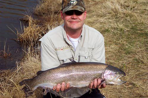 29 Inch Montana Rainbow