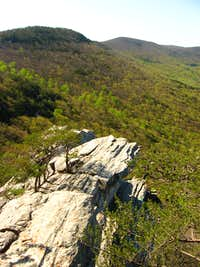 Alabama Mountain Ridge