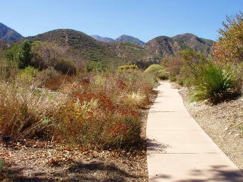 Lytle Creek Ranger Station Native Plant Garden