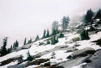 Near the summit.