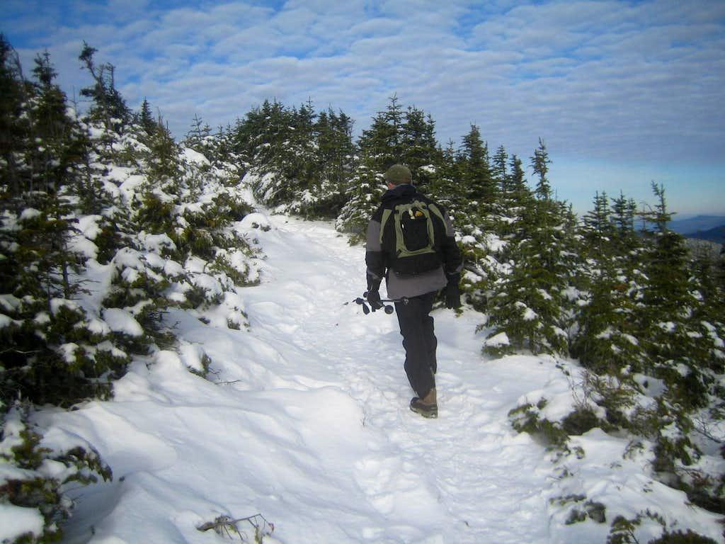 hiking on Signal Ridge
