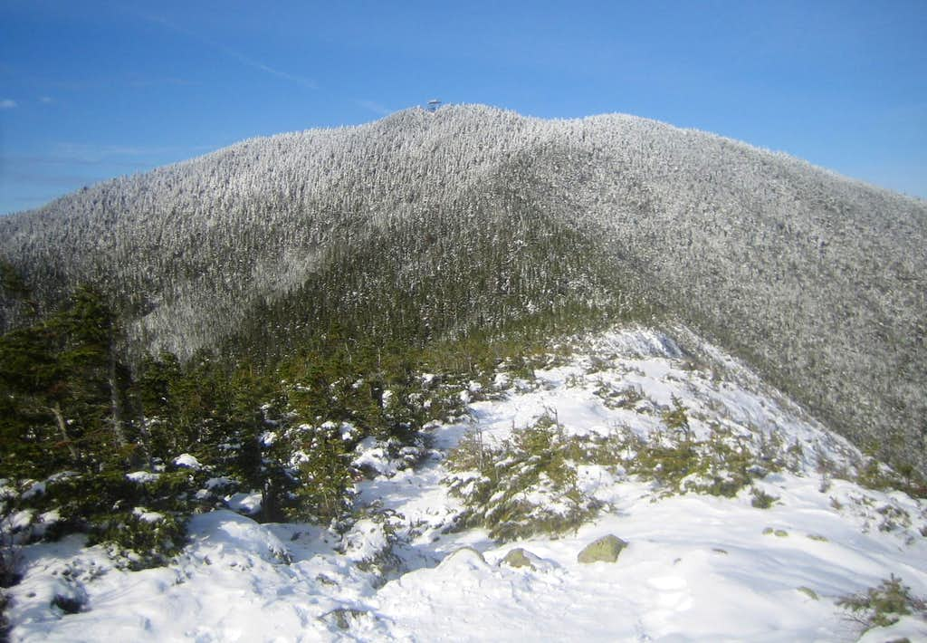 Mt. Carrigain and it's observation tower
