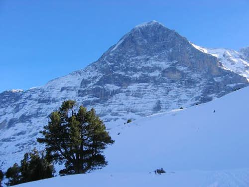 Eiger Face Nord (3 970m)