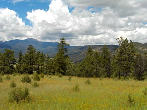 Philmont Scout Ranch