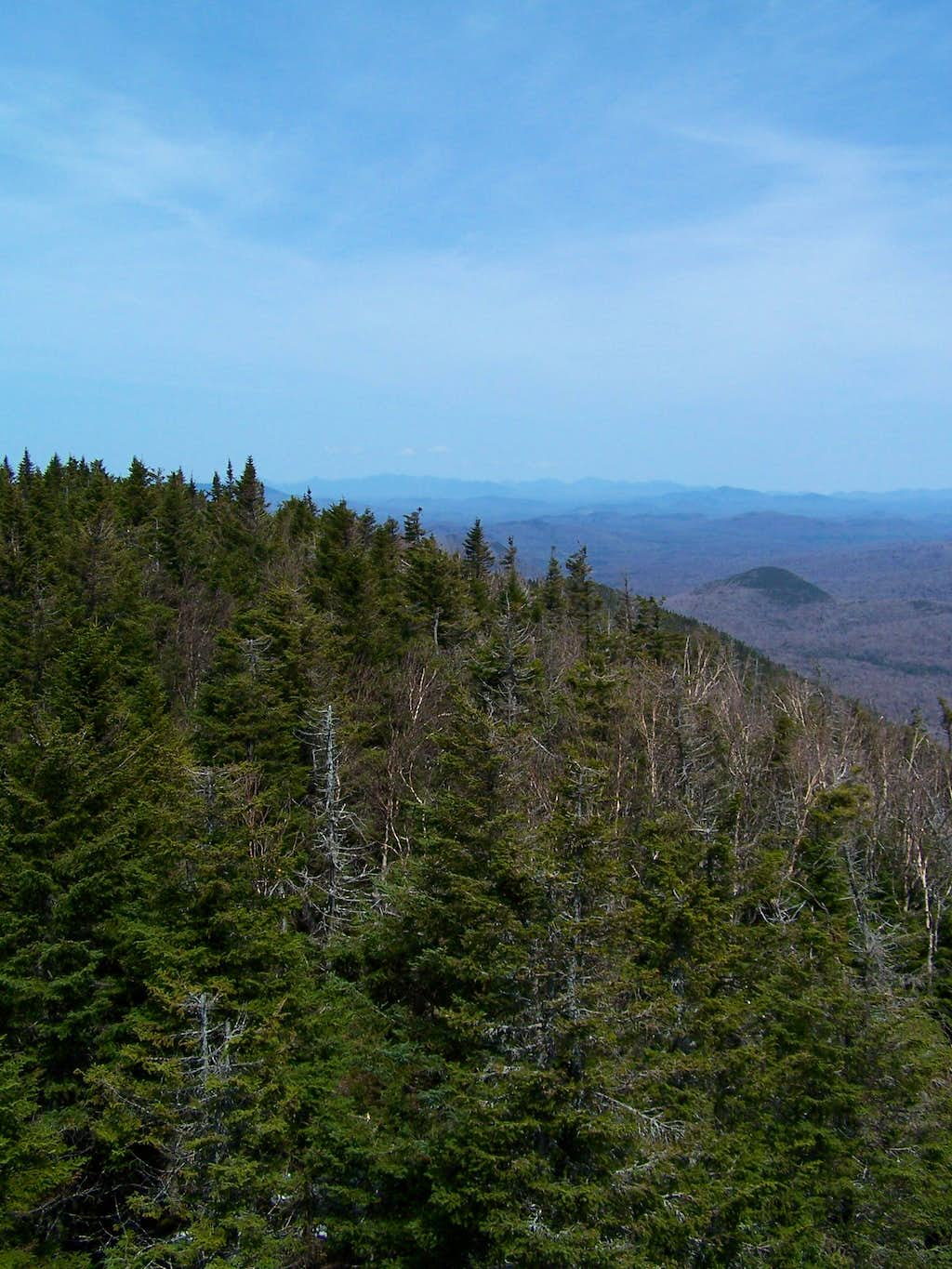 View North from Wakely Mtn Firetower