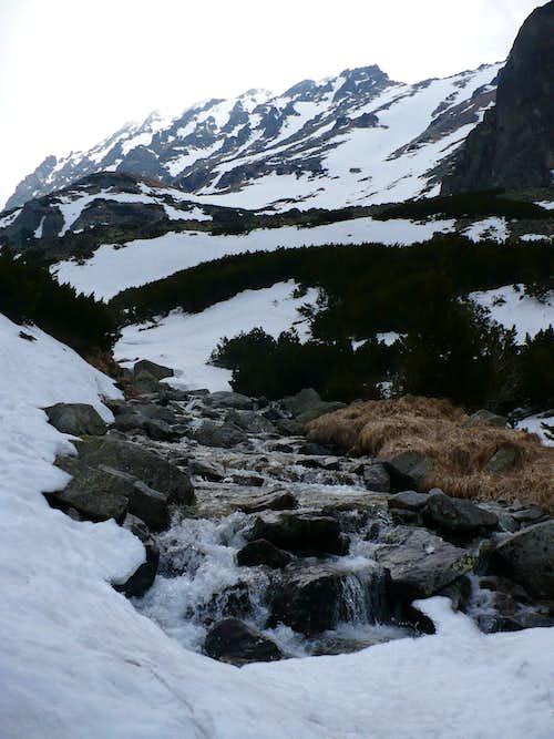 Creek Mlynica in Mlynická valley
