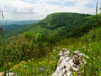 View towards Tar-kõ (950m) from Három-kõ (904m) summit
