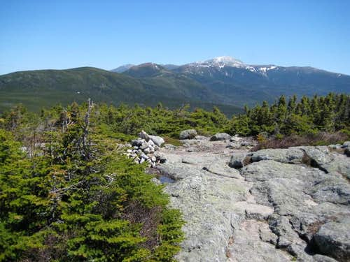View north from Mt. Jackson
