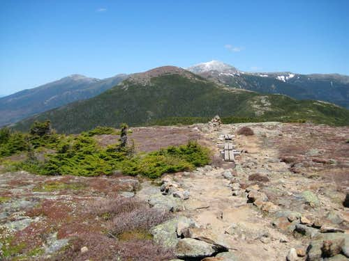 View of Mt. Eisenhower . . .
