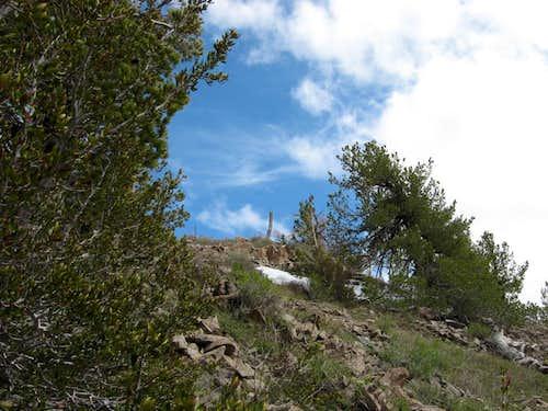 Summit fenceline