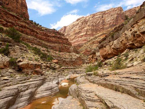 scene in Dark Canyon