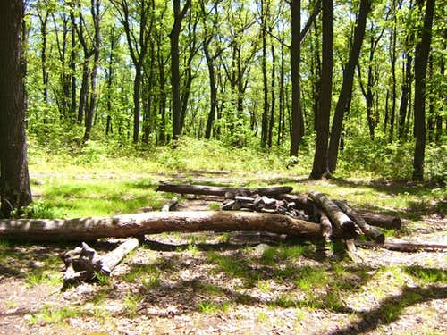 Mount Nittany Campsite