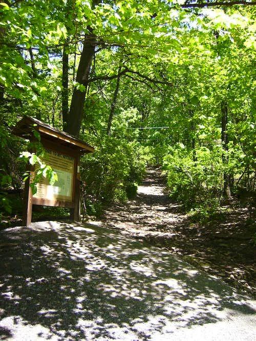 Mount Nittany Trail Head