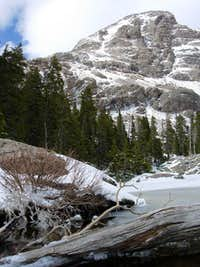 Frozen Willow Lake