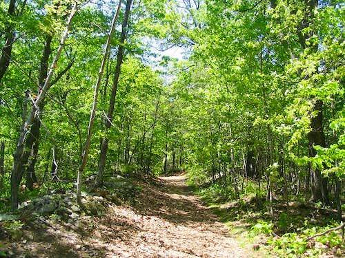 Big House Mountain Trail
