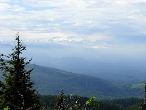 Mount Rainier View