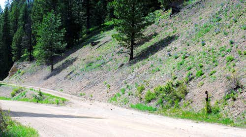 Flat Creek Trailhead