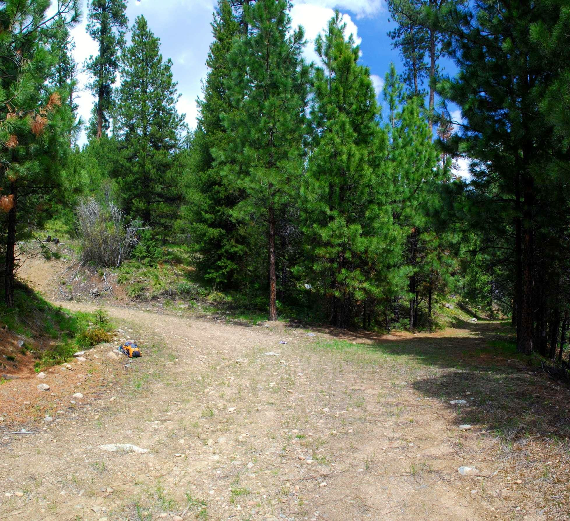 Soda Springs Creek Trailhead