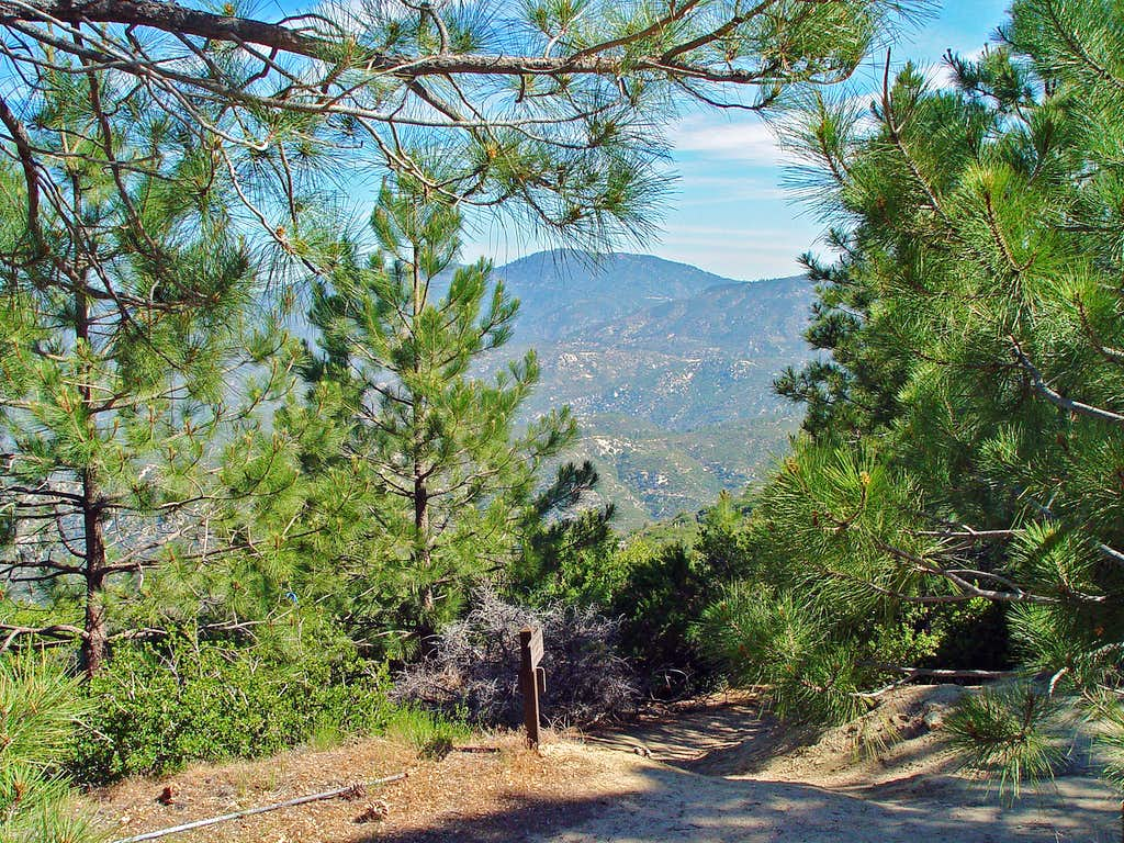 Vetter Mountain Lookout Trail