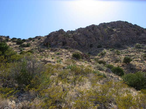 Looking up the east slope