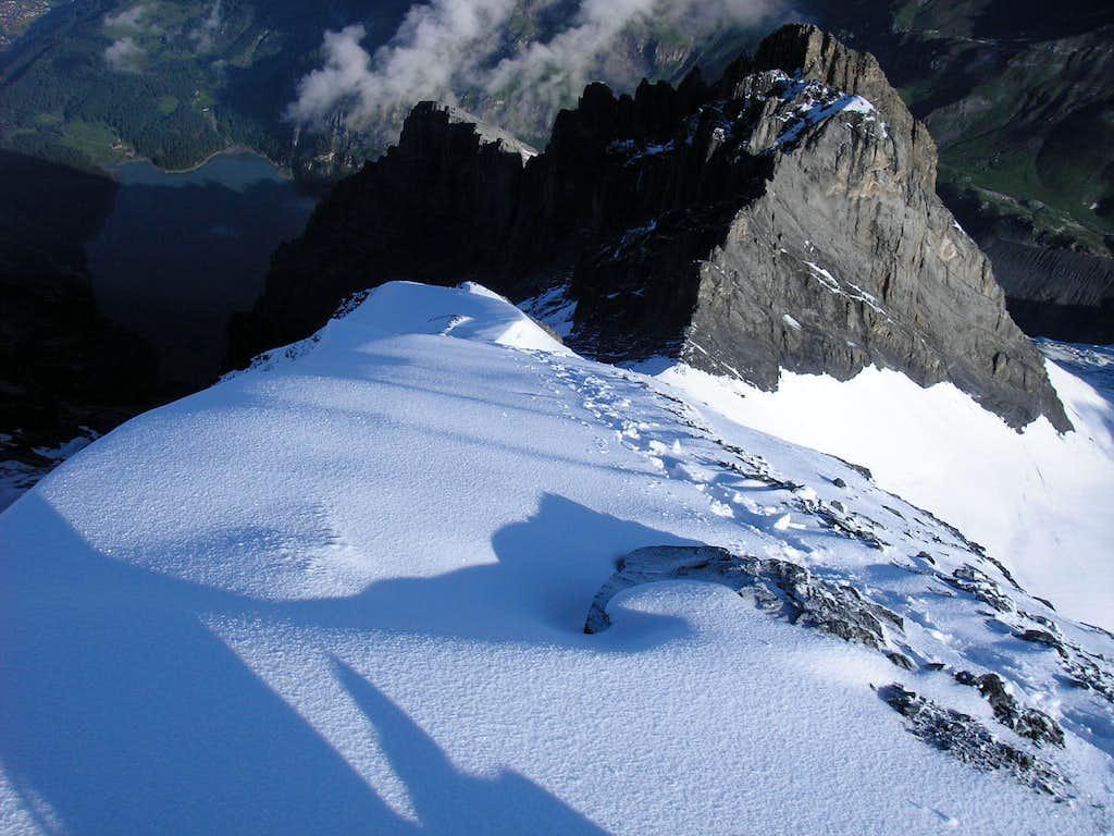 Descent from Blüemlisalphorn 3661m