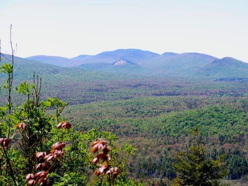 Sawyer Summit view of Sugarloaf and Wakely Mtns.
