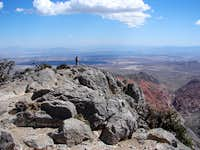 Turtlehead Peak Summit