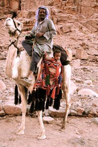 Mt Sinai... babies on camels