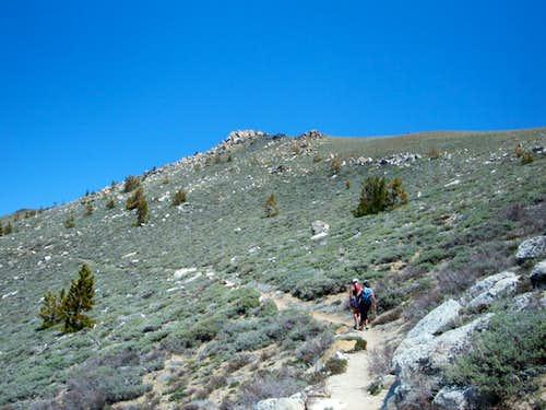 Tahoe Rim Trail route