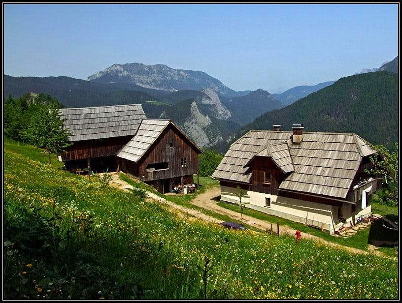 Matko's farm