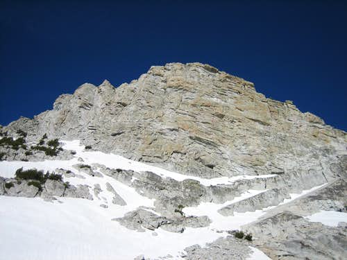 Mt. Harrington's East Face