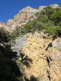 In a gully