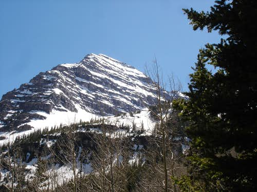 North Face of North Maroon