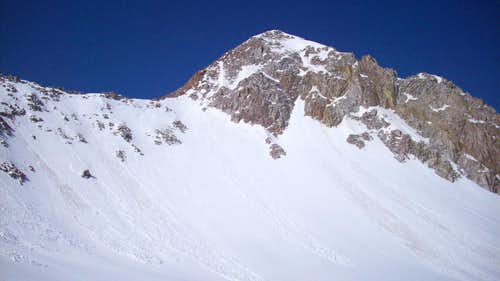 Maybird Headwall