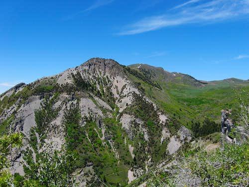 Mahogany Mountain (UT)
