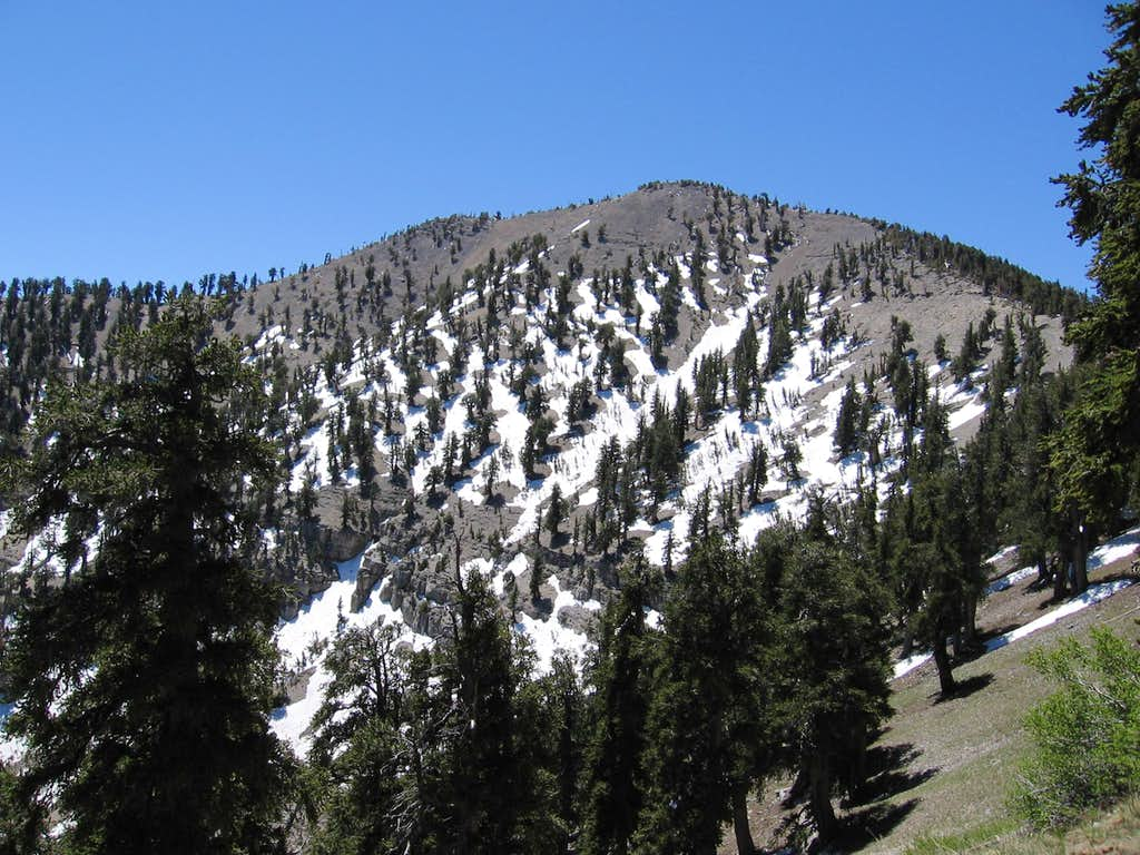 June snow on Griffith