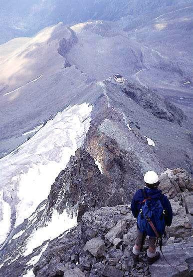 Matterhorn, Hörnligrat