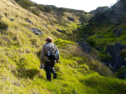 The  Waiakamali Gulch route