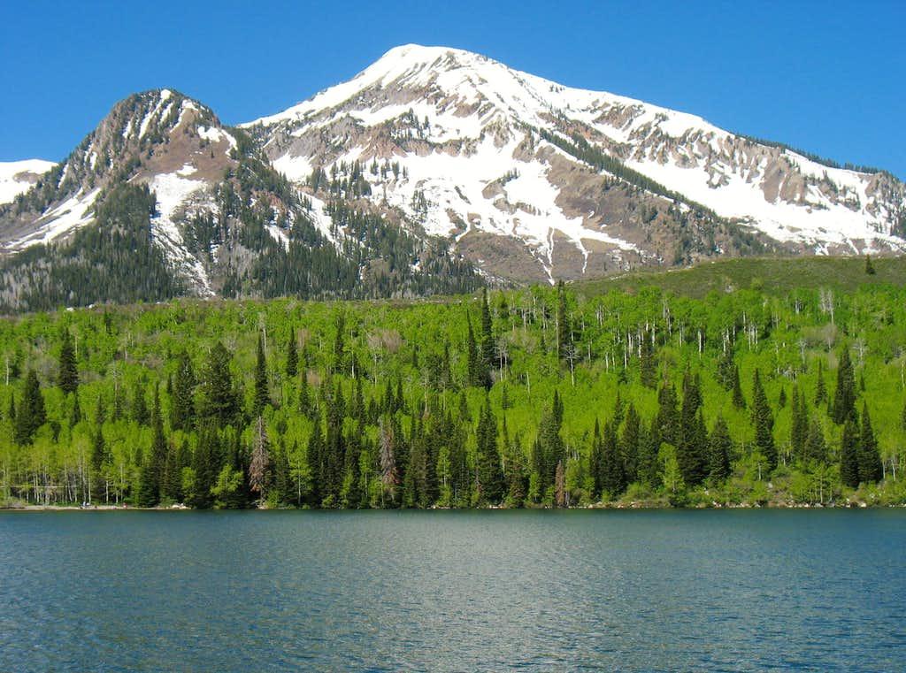 Box Elder Peak from Silver Flat