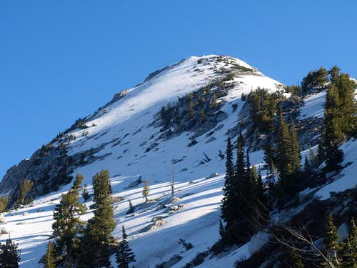 Bighorn Peak from the Lake Hardy trail